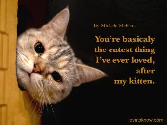 Cute and Funny Love Quotes