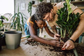 Hardworking couple Planting