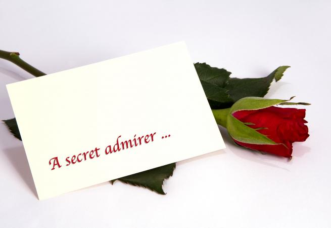 Rose with secret admirer note