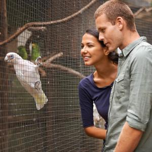 young couple at the zoo