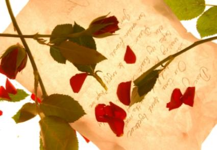 Rose petals and poem