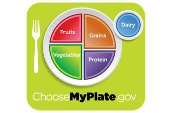 https://cf.ltkcdn.net/diet/images/slide/162153-600x399-myplate_slide.jpg