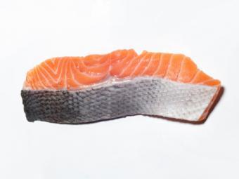 Piece of Salmon