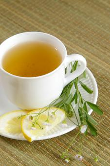 dieting and green tea