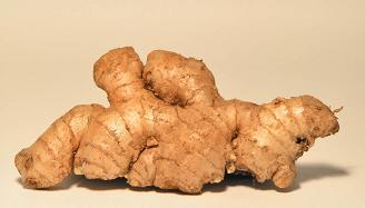 Ginger Root Appetite Suppressant