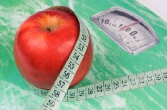Calorie Based Diet Plans