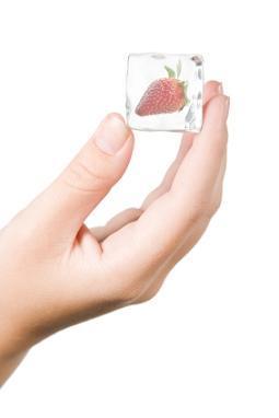 https://cf.ltkcdn.net/diet/images/slide/86227-255x382-Fresh-Is-Better-5.JPG