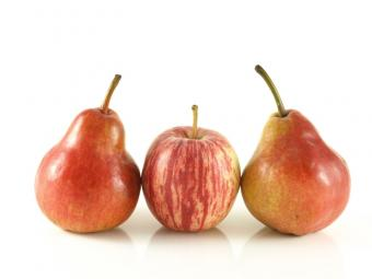 Diet for a Pear Shape