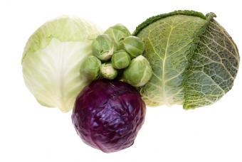 https://cf.ltkcdn.net/diet/images/slide/86301-847x567-White-Red-and-Green-Cabbage.JPG