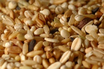 dietary fiber whole grains