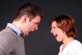 Divorce Predictors