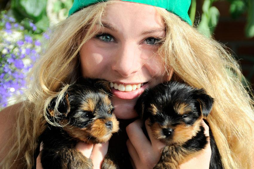 https://cf.ltkcdn.net/dogs/images/slide/179253-850x565-girl-holding-two-puppies.jpg