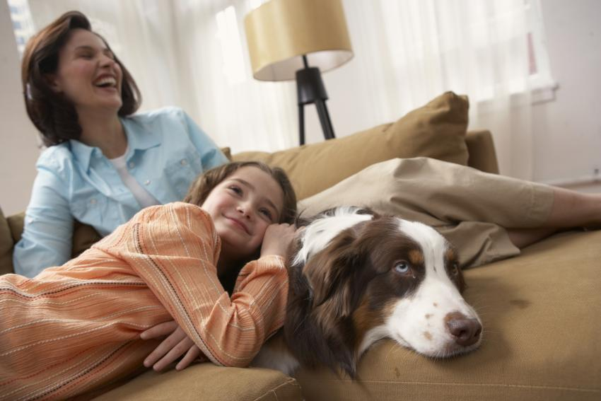 https://cf.ltkcdn.net/dogs/images/slide/207906-850x567-Mother-and-daughter-on-sofa-with-dog.jpg