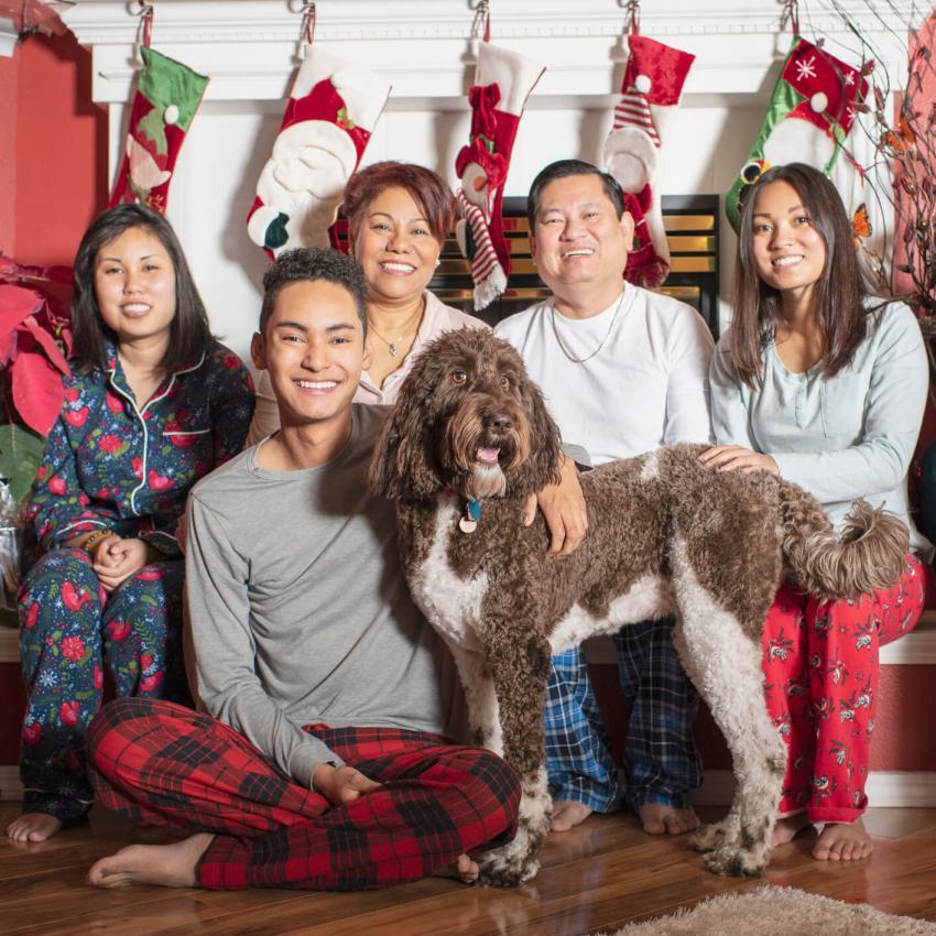 https://cf.ltkcdn.net/dogs/images/slide/245710-850x850-2-christmas-dog-pictures.jpg