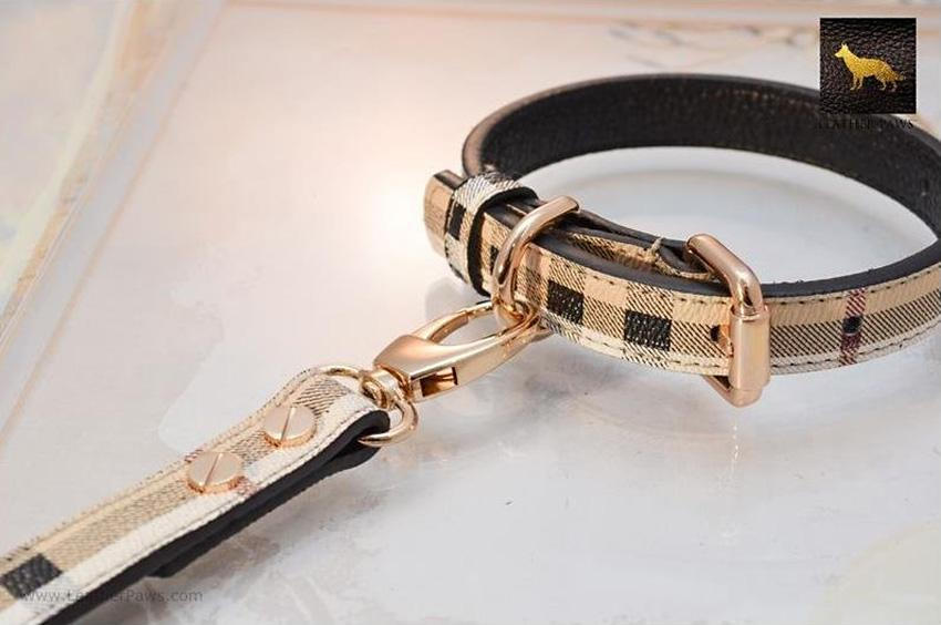 https://cf.ltkcdn.net/dogs/images/slide/248132-850x564-Leather-Paws-Small-Plaid-Dog-Collar.jpg