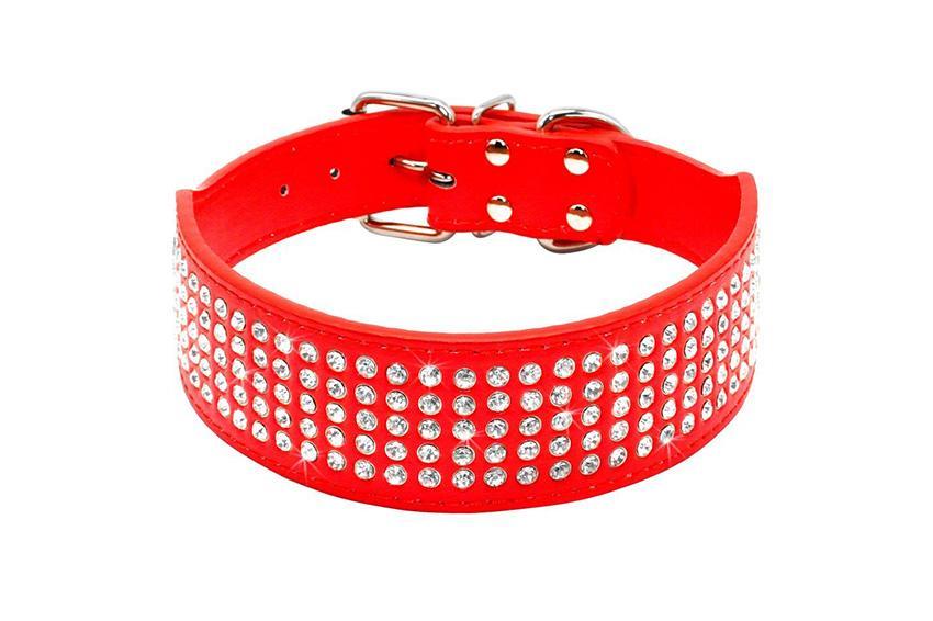 https://cf.ltkcdn.net/dogs/images/slide/248136-850x566-Berry-Pet-Rhinestones-Dog-Collar.jpg