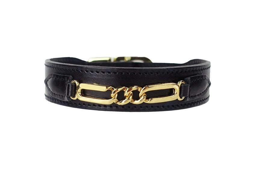https://cf.ltkcdn.net/dogs/images/slide/248142-850x566-Gold-Plated-Link-Design-Collar.jpg
