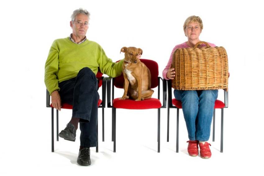 https://cf.ltkcdn.net/dogs/images/slide/90546-850x566-Vet_Waiting_Room.jpg
