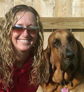 Search and Rescue Dogs Interview