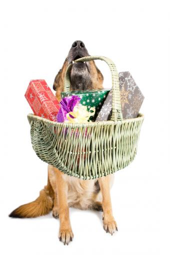 Gallery of Dog Birthday Gift Baskets