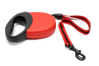 retractable leash