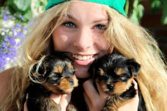 https://cf.ltkcdn.net/dogs/images/slide/179253-850x565-girl-holding-two-puppies.jpg