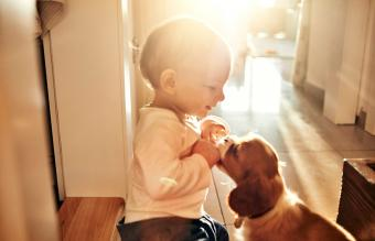 Baby and puppy playing