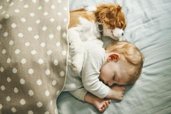 Tips for Introducing Your Baby to Your Puppy
