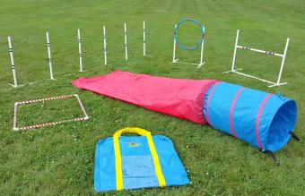 Affordable Agility Agility in the Bag