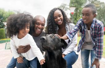 3 Places to Find Puppy Adoptions and What to Expect