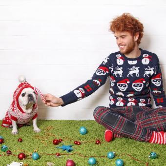 https://cf.ltkcdn.net/dogs/images/slide/245711-850x850-3-christmas-dog-pictures.jpg