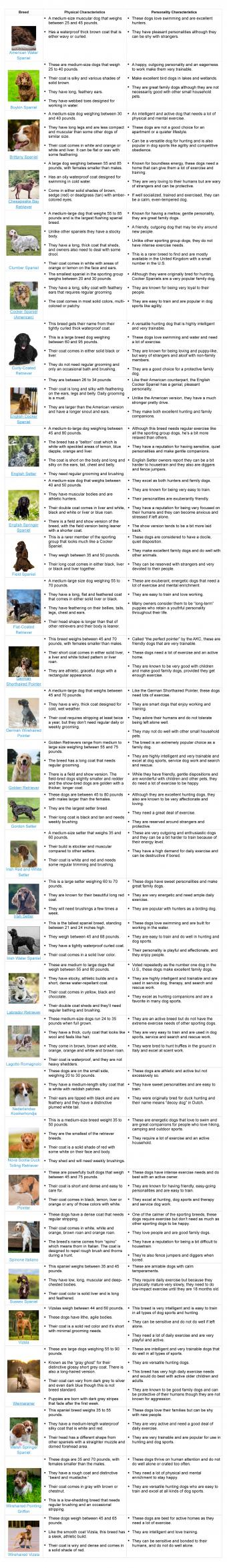 A printable list of the sporting dog breeds