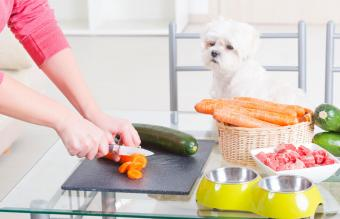 Tips for Making Home-Cooked Dog Food