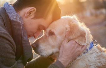 When to Put Your Dog Down: Doing What's Best For Your Canine