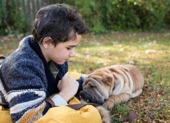 Boy with a Shar-Pei puppy