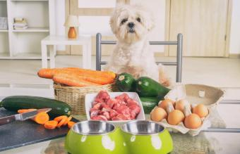 Cheap (but Healthy) Raw Dog Food Recipes