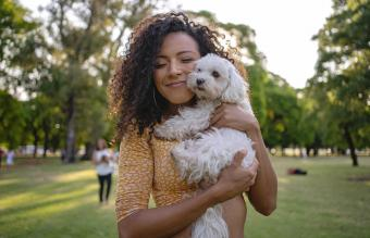36 Hypoallergenic Dog Breeds: Easy to Love & Live With