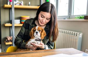 15 Best Apartment Dogs: Suitable Breeds of All Sizes