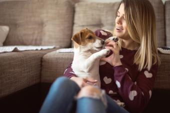Beautiful young woman playing with her dog at home