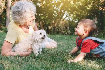 Baby Boy And Woman With Cavachon Dog