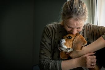 Girl Loving And Hugging Tightly Her Dog