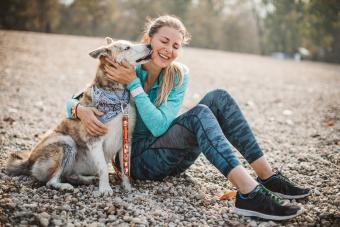 How to Make Running With Your Dogs Safe and Stress-Free