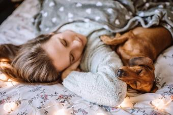 Woman Enjoying Morning With Dachshund in Bed