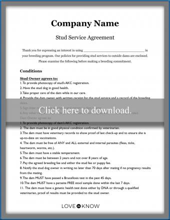 Dog Stud Service Agreement