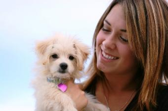A woman holding her new puppy