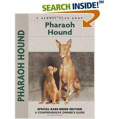 Pharaoh Hound by Juliette Cunliffe