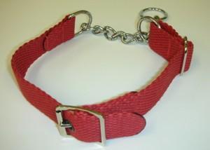 The Vasquez training collar