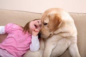 Dog interacting with child who has Downs Syndrome