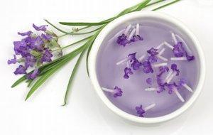 Make a Calming Lavender Dog Collar