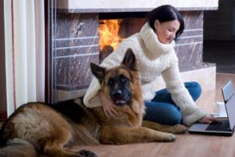 Smoke Detectors Keep Dogs and Family Safe